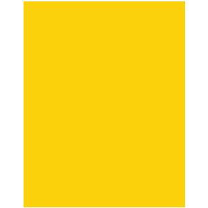 Microsoft Office 2019 Standard license